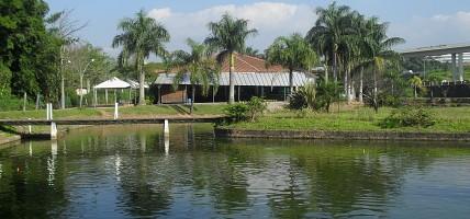 Massas Pesk Bem no Pesqueiro Lagoa dos Patos
