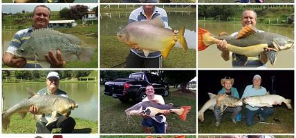 Massas para Vários Peixes